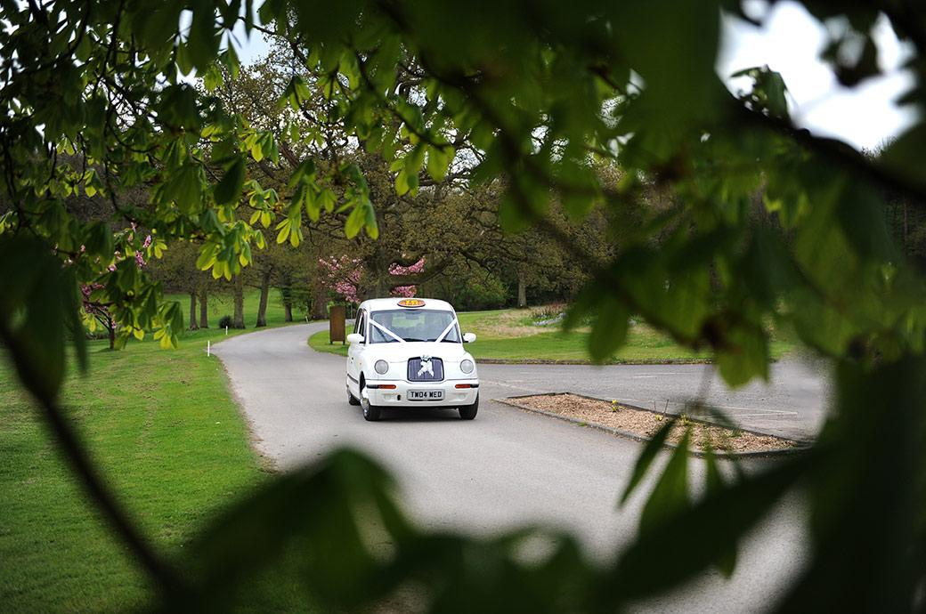 White wedding taxi cab arrives with Bride and groom inside at the Surrey wedding venue Gatton Manor nr Dorking in Ockley village