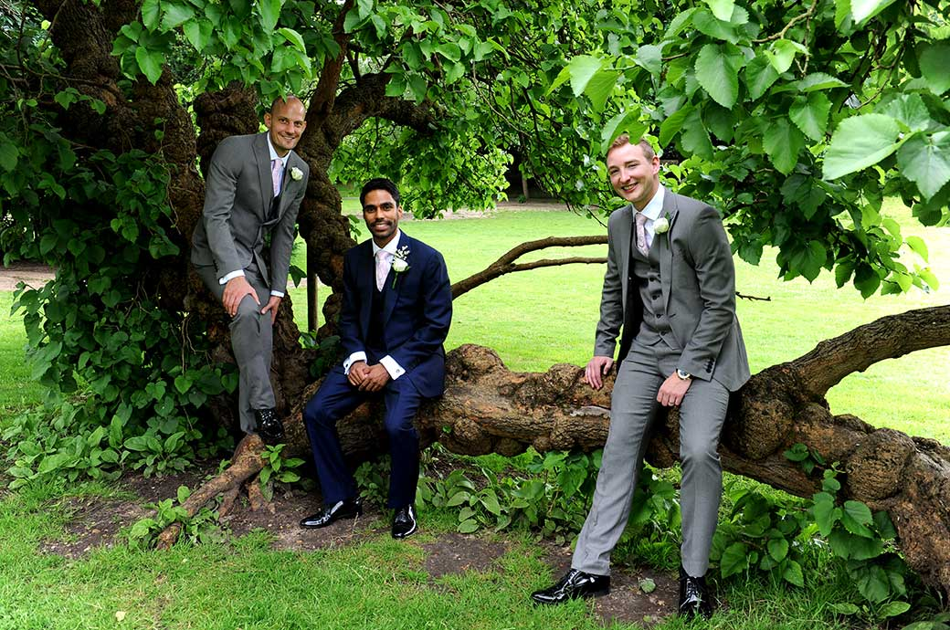 Groom and his Groomsmen at Hampton Court House Surrey sitting on a  tree trunk in the lovely green and tranquil gardens on the morning of the wedding
