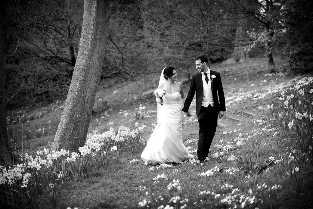 appy newlyweds walk hand in hand through the daffodils in this romantic wedding picture taken in the woods at Pembroke Lodge Richmond Park by Surrey Lane wedding photography