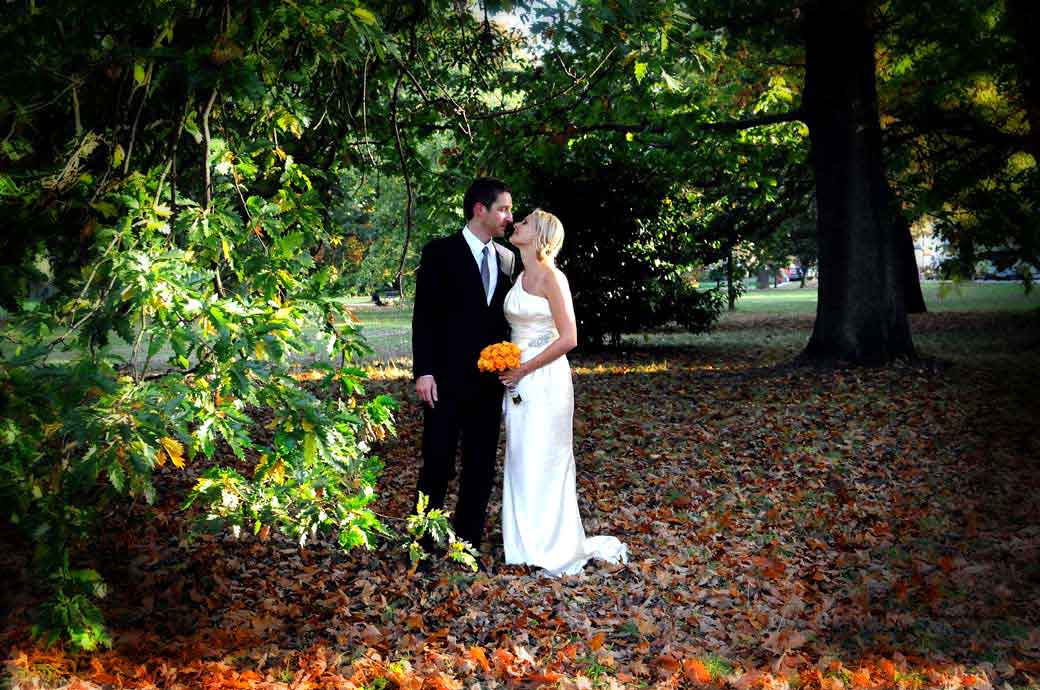 A romantic wedding photograph of a couple kissing under the trees in Richmond Park Surrey after a wedding service at Richmond Register Office