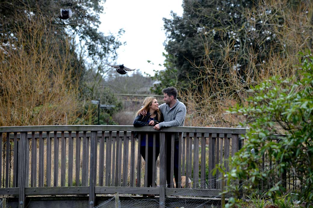 Standing on a bridge looking in to each others eyes in this romantic pre wedding photograph taken in Brockwell Park by a Surrey Lane wedding photographer