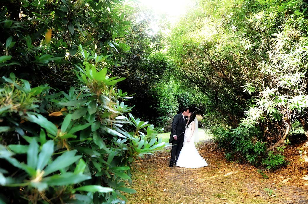 Wedding photograph of the Bride and groom in the grounds of the picturesque Surrey wedding venue Gorse Hill having a discrete kiss amongst the Rhododendrons