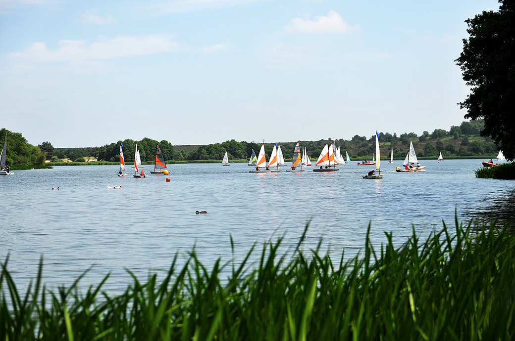 A view captured at Surrey wedding venue Frensham Ponds Hotel in Farnham of the many sailing boats out on the great pond