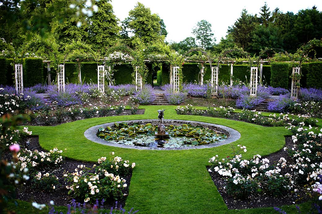 A picture taken in the wonderfully colourful grounds of Surrey wedding venue Great Fosters in Egham of the beautiful sunken circular rose garden with accompanying lavender
