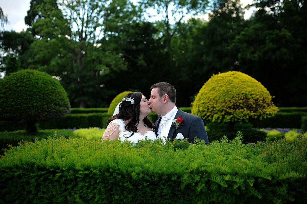 Colourful wedding photograph taken at the stunning Surrey wedding venue Great Fosters in Egham over the hedges of the parterre of a couple standing within and kissing