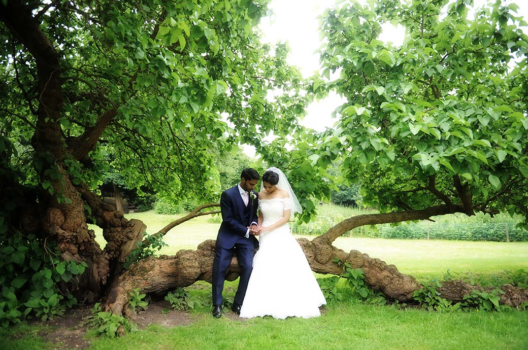 Bride and groom sitting together on a tree trunk admiring their wedding rings in the beautiful green surroundings of Surrey venue Hampton Court House next to Bushy Park