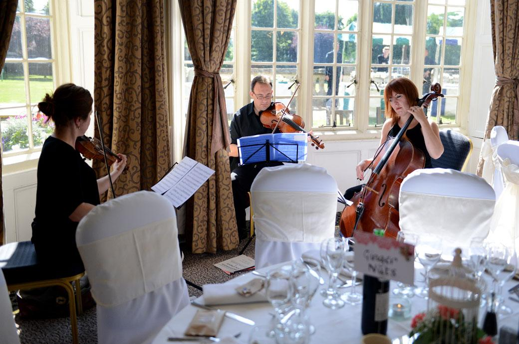Three players of a string quartet provide an uplifting atmosphere in this wedding photo taken in the Sopwith room by a Surrey Lane wedding photographer at Horsley Towers