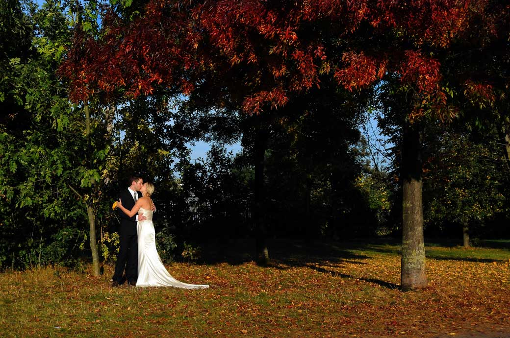 A lovely romantic kiss photo taken under the beautiful autumnal trees in Richmond park after the wedding in Richmond Register Office Surrey